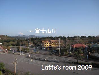 view-165.jpg