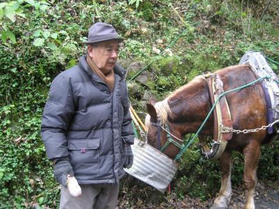 馬とおじさん