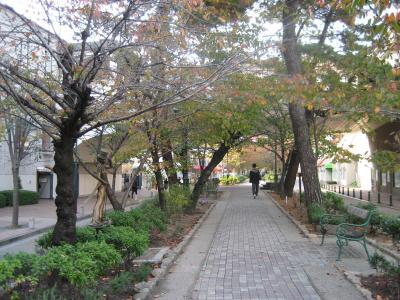 宝塚 花の小道