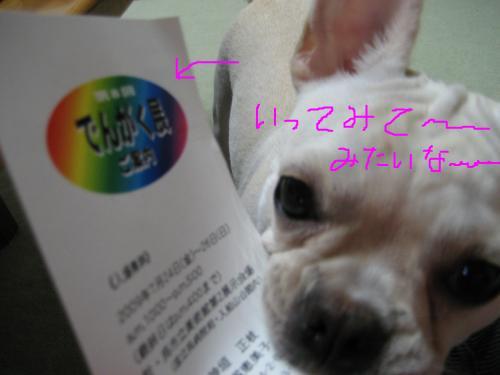 snap_puko0429_200973143459.jpg