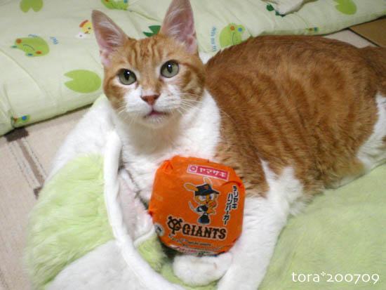 tora07-09-52.jpg