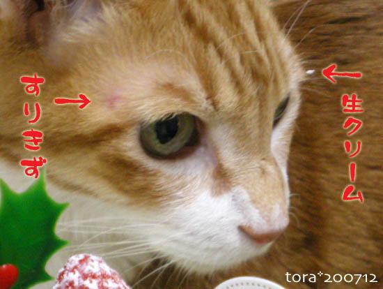 tora07-12-116.jpg