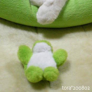 tora08-02-62.jpg