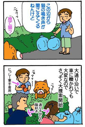 猫のシュン太郎物語