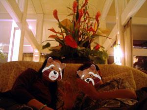ハレクラニホテル探検ロビーのソファ