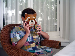 ハワイ地震 携帯つながれ