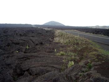 マウナケア山頂 星空観測ツアーレポ サドルロード