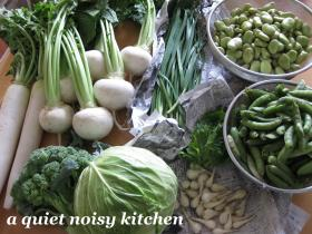 実家の野菜