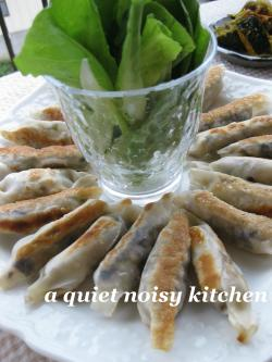 夏野菜のリボン餃子