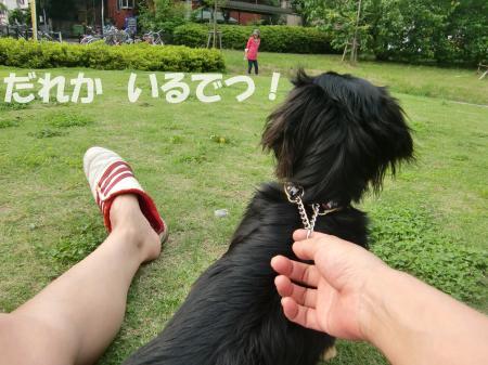 CIMG2632_convert_20090614201444[1]