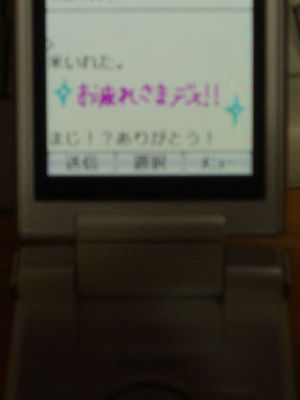img20080112_1.jpg