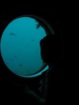 海底館 水深何mだったっけ