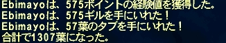 ff11_016.jpg