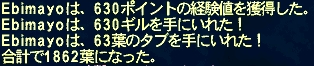 ff11_017.jpg