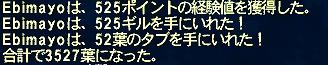 ff11_018.jpg