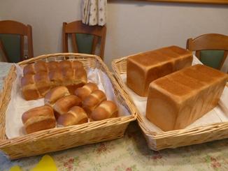 人間用パン