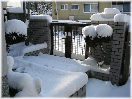 2008-02-24-2.jpg