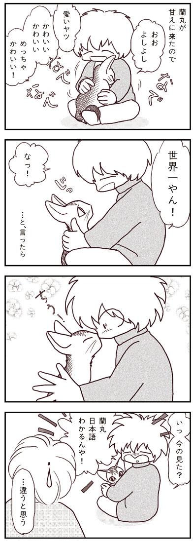 ranmaru_031_1.jpg