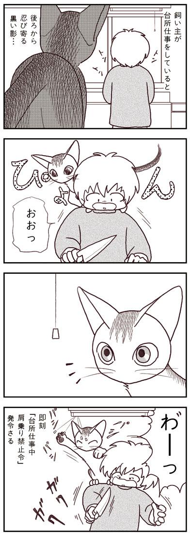 ranmaru_033_1.jpg
