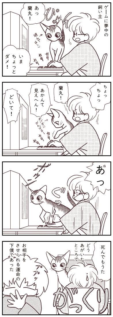 ranmaru_035_1.jpg
