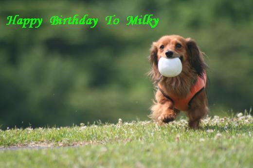 誕生日ミルキー