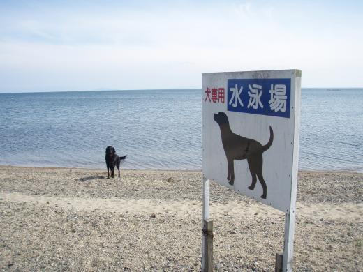 びわこ南浜遊泳場