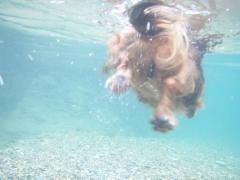 川遊び7みる水中