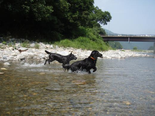 川遊び9ランベル