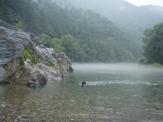 川遊び11