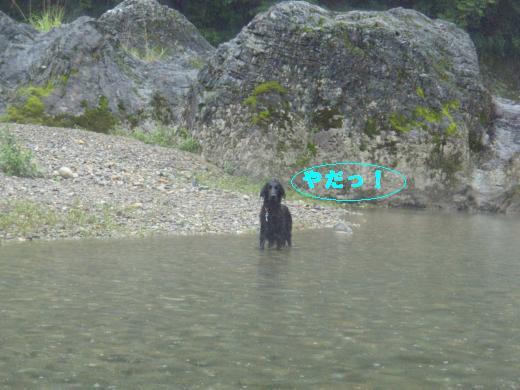川遊び11らん3