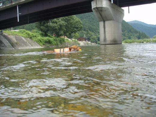 川遊び12 みる