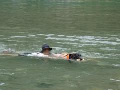 川遊び13 ランと泳ぐ1