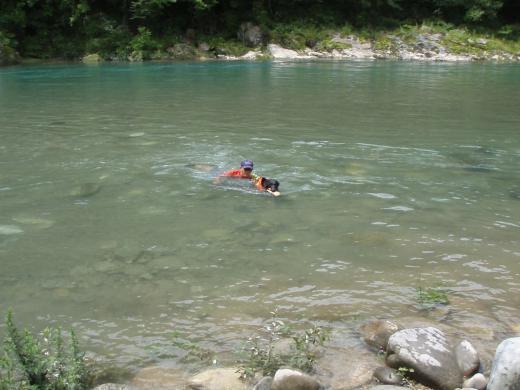 川遊び13 ランと泳ぐ 父