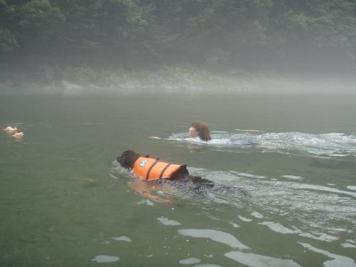 川遊び14 ランと競泳