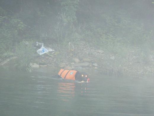 川遊び14 ラン子ビーム