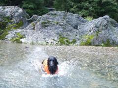 川遊び16 ラン4