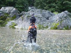 川遊び16 ラン2