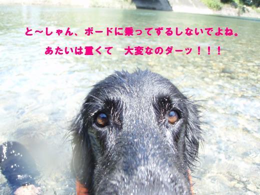 川遊び17 アップ