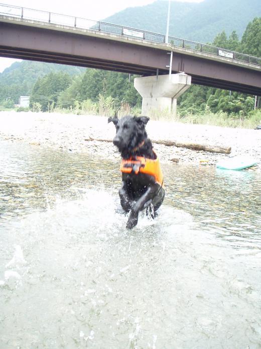 川遊び20 ジャンプ