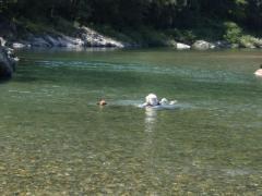 川遊び23 ミルと母