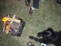 9・16 焚き火番犬