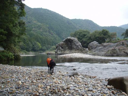 川遊び25 のんびり