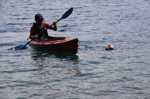 本栖湖9・17 父とミル1