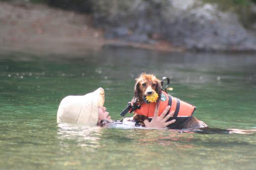 川遊び28 ミルと母