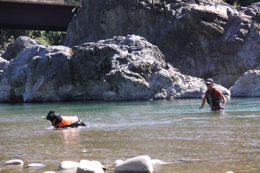 川遊び29 父とラン