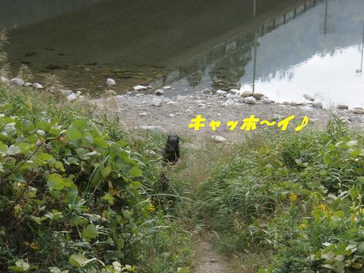 川遊び30 キャッホー