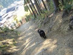 11・7 散歩4