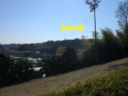 CIMG2869.jpg