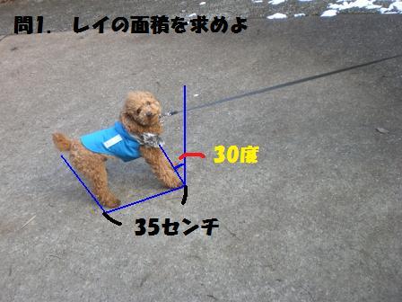 CIMG3061.jpg