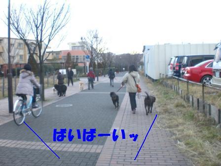 CIMG3202.jpg